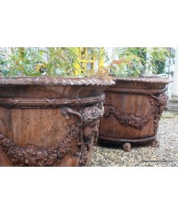 Terracotta Urns & Planters